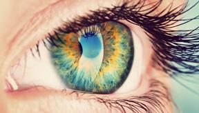 Retinal Care